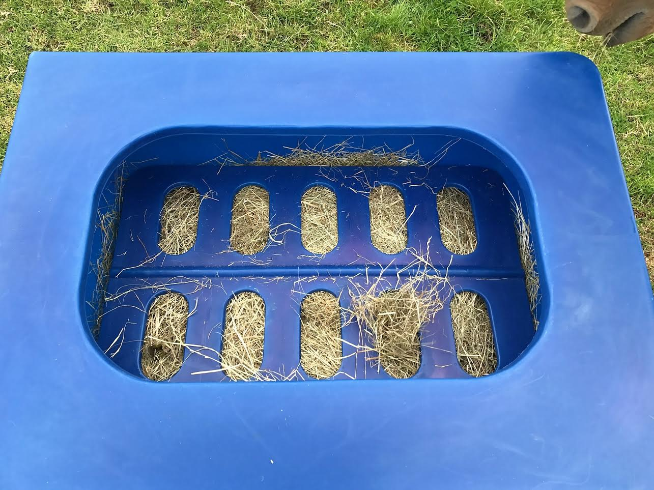 nag mini best images flakes horse of stables slow holds on bag feeder available in nagbags bags feeders hay pinterest